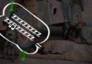 How tactical sleeping can win Australian Idol
