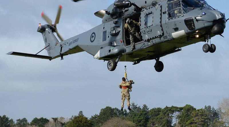 New Zealand Military working dogs get helicopter training. NZDF photos