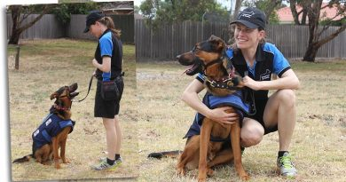 Training Session #2 – Service Dogs: Part 1