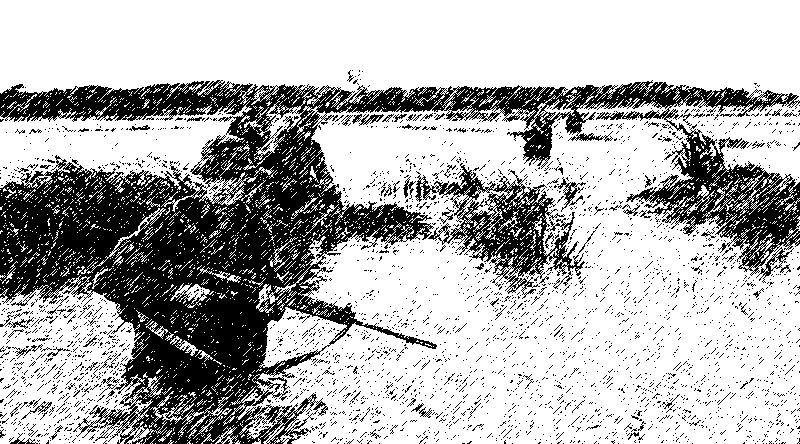Vietnam paddy field patrol