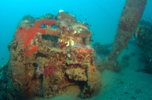 An engine mount from Catalina 24-25 found in waters off Cairns, Queensland. Image supplied courtesy of Kevin Coombs, Cairns.