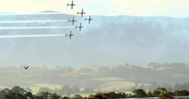 The Roulettes at Wings Over Illawarra 2016. Photo by Brian Hartigan