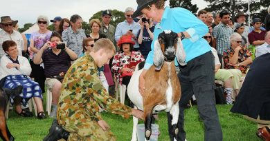 Leading Cadet Aiden Carling (602 Squadron) was called up for the goat milking competition. Observing in the background, in Flying Dress, is Leading Cadet Ben Carter (LCDT Carter qualified for his Solo Gliding Badge in 2014). Image contributed by Stephen Kiley, a retired B777 Captain, late of Singapore Airlines.