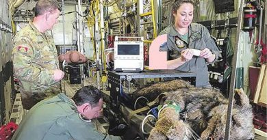 Major Kendall Crowker, Flight Lieutenant Scott Glading and Leading Aircraftwoman Telisha Glading tend to a pretend military working dog on a RAAF aeromedical evacuation flight. Story and photo from ARMY newspaper.