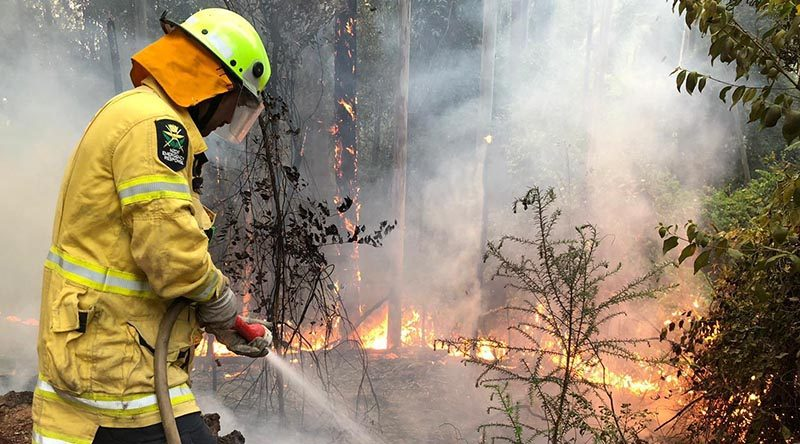 A New Zealand Defence Force firefighter works to control bush fires near Wauchope, New South Wales. NZDF photo.