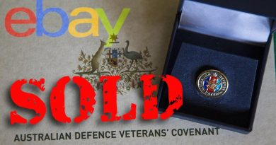 Veteran lapel pin sold on eBay for more than $5000.