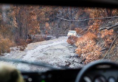 Op Bushfire Assist – 22 January UPDATE