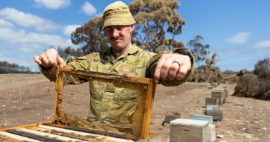 Former bee keeper Trooper Daniel Byford from the 1st Armoured Regiment checks one of more around 800 beehives damaged or destroyed in the Kangaroo Island bushfires. Photo by Corporal Tristan Kennedy.