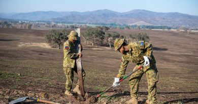 Australian Army Private Leonel Salilin (left) from 5th/6th RVR and Private DaWit Htoo, 8th/7th RVR, remove fire-affected fence posts on Operation Bushfire Assist 19-20. Photo by Trooper Jonathan Goedhart.