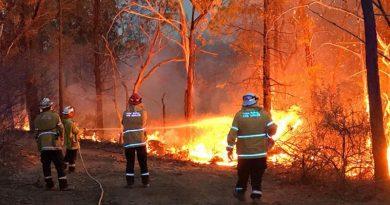Lieutenant Matt Urquhart from HMAS Albatross fights a fire on the New South Wales south coast as a member of the NSW Rural Fire Service, during the 2019-20 Australian bushfire crisis.