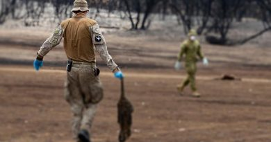 Defence optics suddenly warped by real-life bushfire task