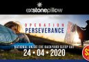 Exercise Stone Pillow brought forward