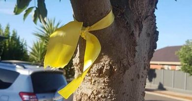 A yellow ribbon represents a veteran who has taken his own life.