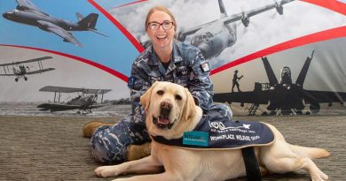Hooper, the workplace welfare dog, receives a pat from Squadron Leader Lauretta Searle during Hooper's visit to the Air Force 2021 office at RAAF Base Fairbairn. Photo by Corporal Kylie Gibson.