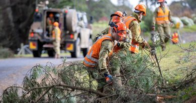 Army personnel from the 22nd Engineer Regiment and the 4th/19th Prince of Wales's Light Horse Regiment clear a fallen tree branch in Carrajung, Victoria. Story by Captain Martin Hadley. Photo by Corporal David Cotton.