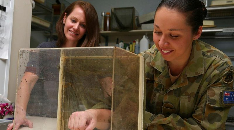 Army scientific officer Captain Lisa Rigby, right, feeds mosquitoes as part of her research. Story by Captain Annie Richardson.